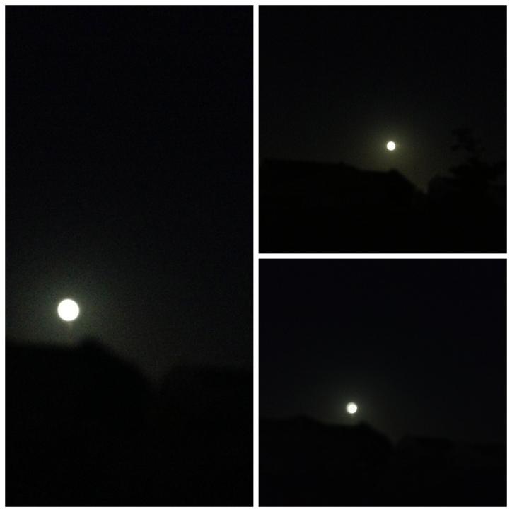 Full Moon, metamorphosis, vampires